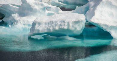 Плаващ арктически лед