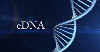 ДНК на околната среда