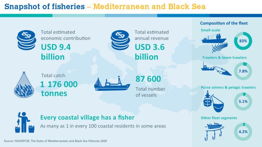 Риболовът в Средиземно и Черно море